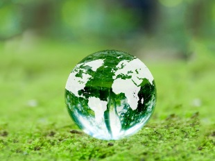 環境への配慮のイメージ